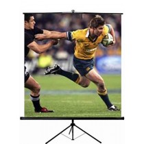 99' Projector Screen With Tripod