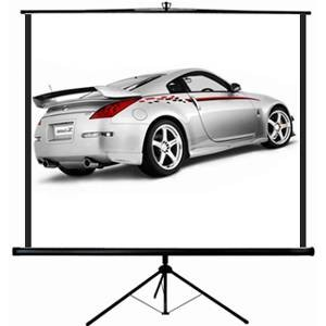 100' Projector Screen With Tripod
